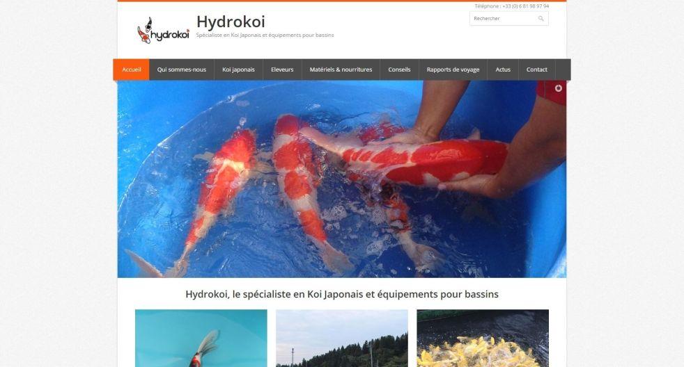 hydrokoi